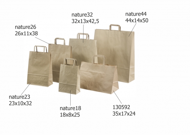 Brown Paper Bags with Flat Handles