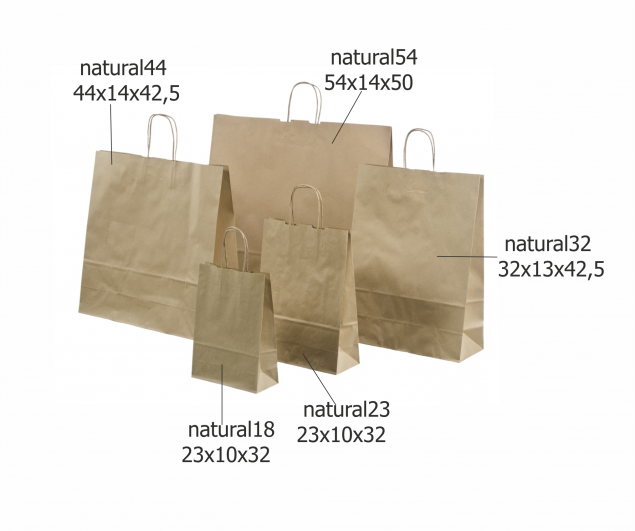 Ecological Paper Bag with Rope Handles